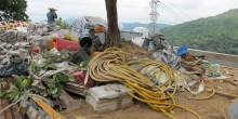 於樹木保讓區內堆放工具物料